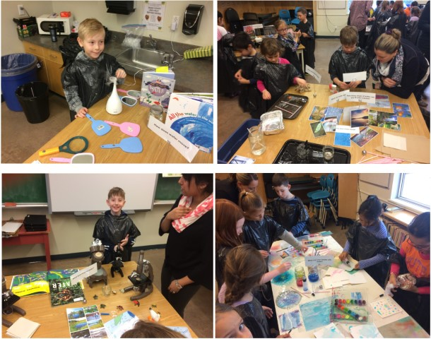 Provocations in the Classroom